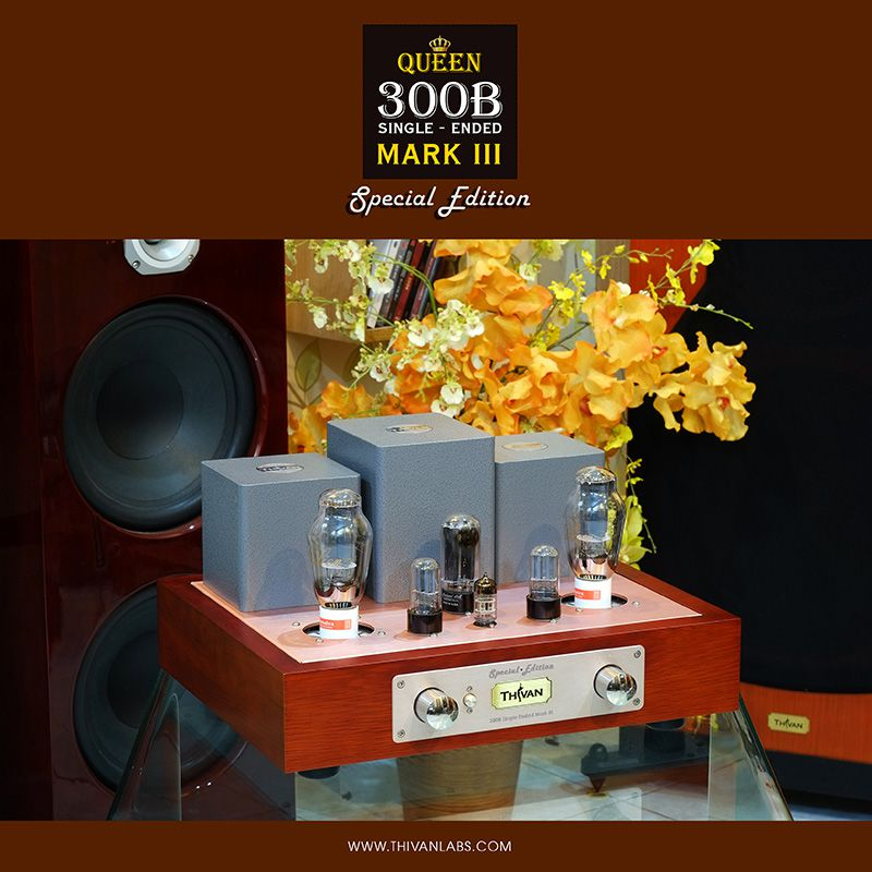 300B Single-ended Mark III – SPECIAL EDITION – 5