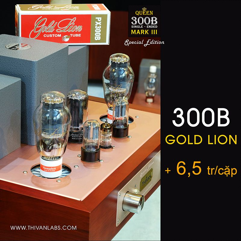 300B Single-ended Mark III – SPECIAL EDITION – 6